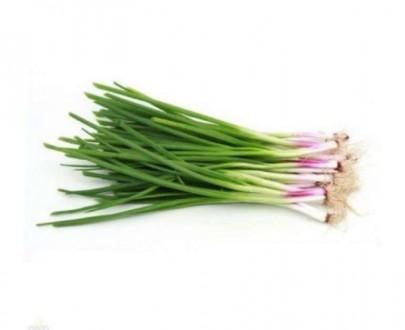Spring Onion - कांदा पात